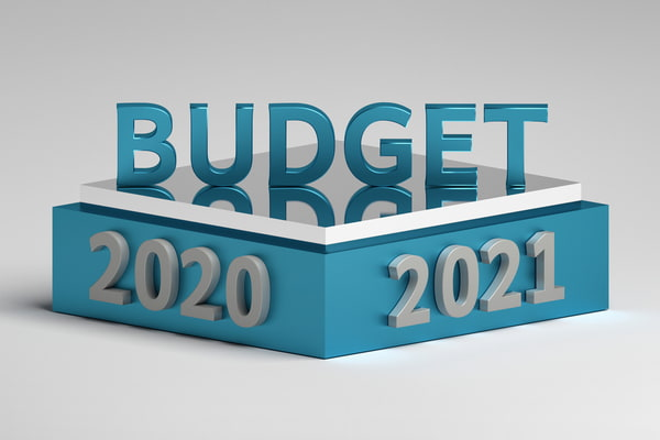 Federal Budget 2020-21 review
