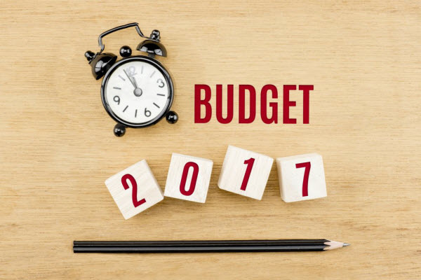Helping you Navigate this Year's Federal Budget