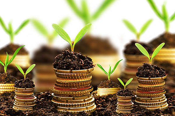 Managed Funds – Growth or Value?